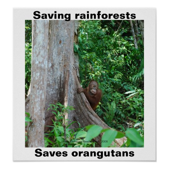 Green for Rainforests and Orangutans Poster