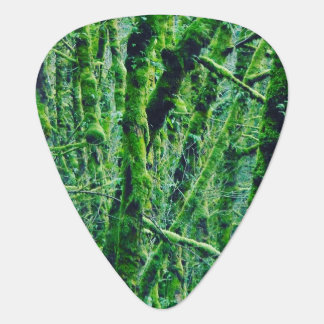 Green Forest Plectrum
