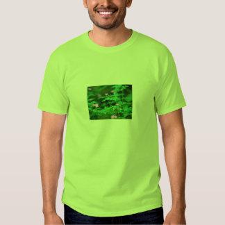 GREEN FOREST SHIRT