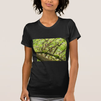Green Forest Tees