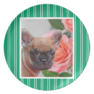 Green French Bulldog dinner plate