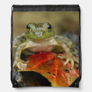 Green frog along the Buffalo Creek bank, Wet Drawstring Bag