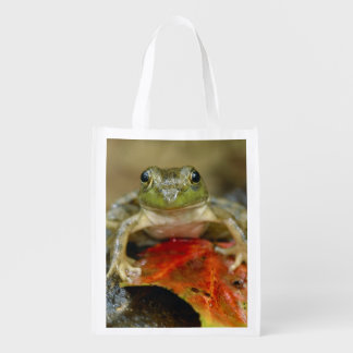 Green frog along the Buffalo Creek bank, Wet Reusable Grocery Bag