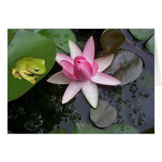 Green frog and pink lilly greeting card