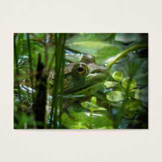 Green Frog ATC Photo Card