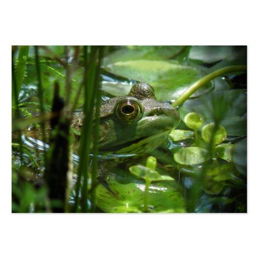 Green Frog ATC Photo Card Business Card