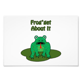 Green Frog - Frog Get About It Photographic Print