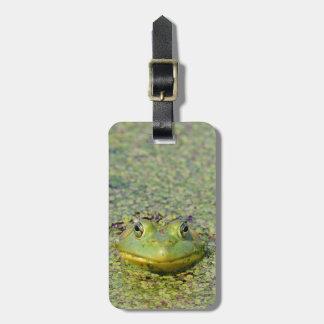 Green frog in duckweed, Canada Luggage Tag