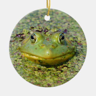 Green frog in duckweed, Canada Round Ceramic Decoration