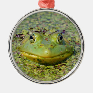 Green frog in duckweed, Canada Silver-Colored Round Decoration