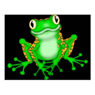 Green Frog Postcards