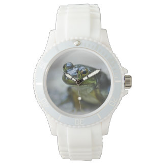 Green Frog Watch