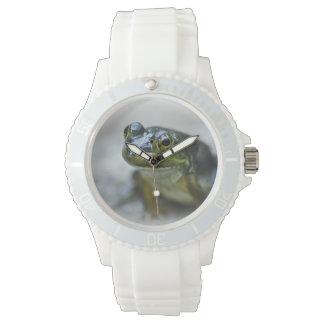 Green Frog Watch