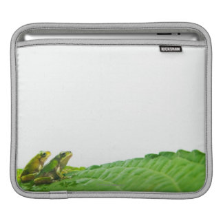 Green frogs on the leave iPad sleeve