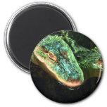 Green Gators 6 Cm Round Magnet