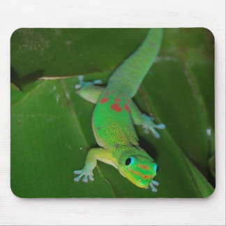 Green Gecko in Hawaii Mouse Mat