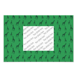 Green giraffes photo print