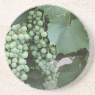 Green Grapes Growing Beverage Coasters