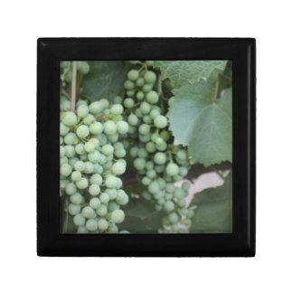 Green Grapes Growing Trinket Box