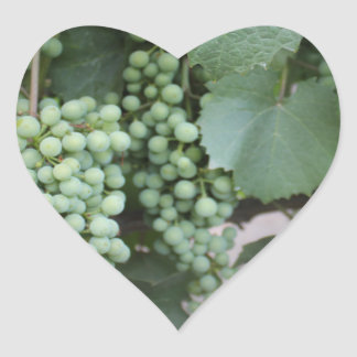 Green Grapes Growing Heart Stickers