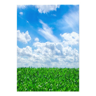 Green grass and blue sky custom announcements