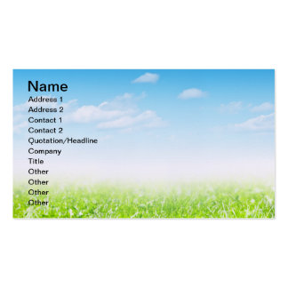 Green Grass And Blue Sky With Clouds Business Card Templates