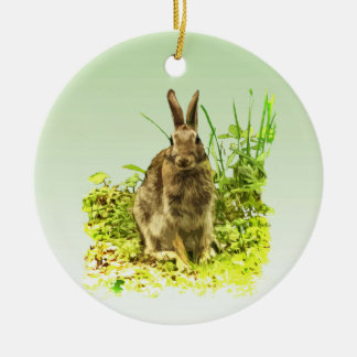 Green Grass and Brown Bunny Rabbit Ornament