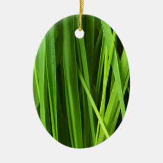 Green Grass background Double-Sided Oval Ceramic Christmas Ornament