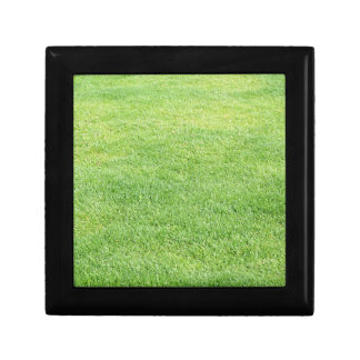 Green grass background gift box