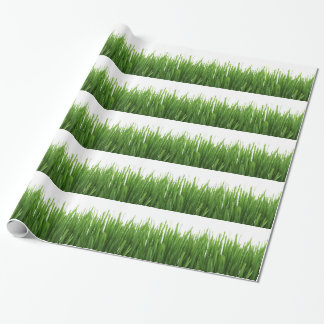 Green Grass background Wrapping Paper