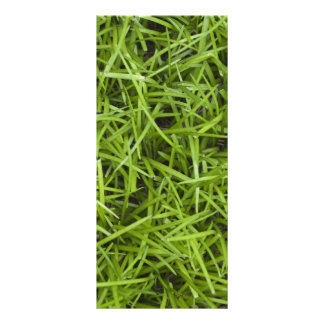 Green Grass Backyard Wedding Program Custom Rack Cards