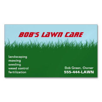 Green Grass | Blue Sky Magnetic Business Cards