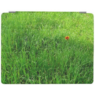 Green Grass iPad Cover