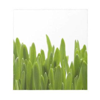 Green Grass Notepad