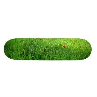 Green Grass Skate Board Decks