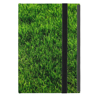 Green grass texture from a soccer field case for iPad mini