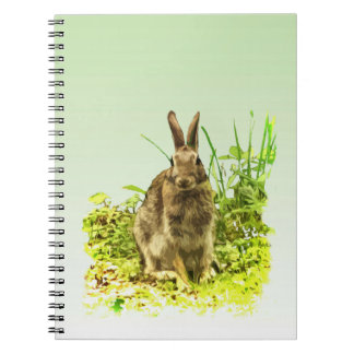 Green Grass with Bunny Rabbit Notebook