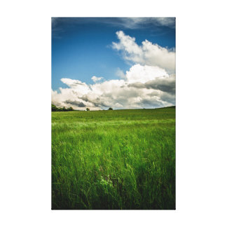 Green Green Grass Canvas Print