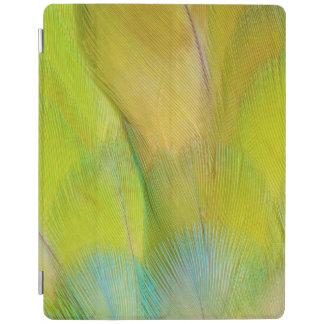 Green Headed Parrot Horizontal iPad Cover