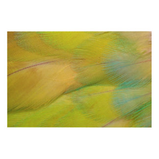 Green Headed Parrot Horizontal Wood Wall Art