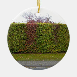 Green hedge texture christmas ornament