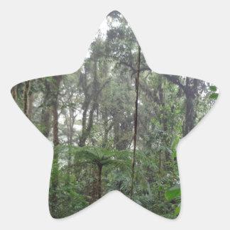 green hell star sticker