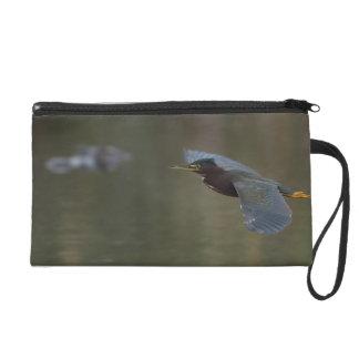 green heron & alligator wristlet purse