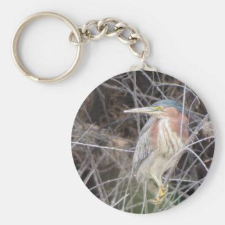 Green Heron Basic Round Button Key Ring