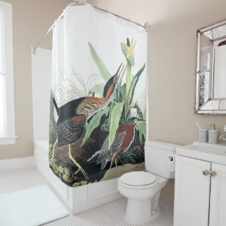 Green Heron Birds Audubon Wildlife Shower Curtain