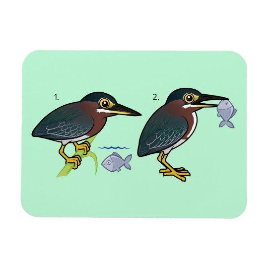 Green Heron Hunting Technique Rectangular Photo Magnet