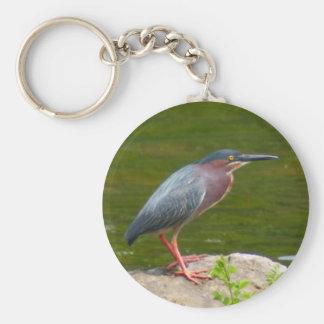 Green Heron Key Chains
