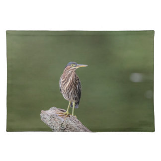 Green Heron on a log Placemat