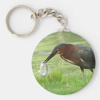 Green Heron with fish Keychain