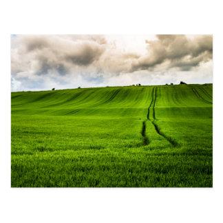 Green Hills landscape Postcard